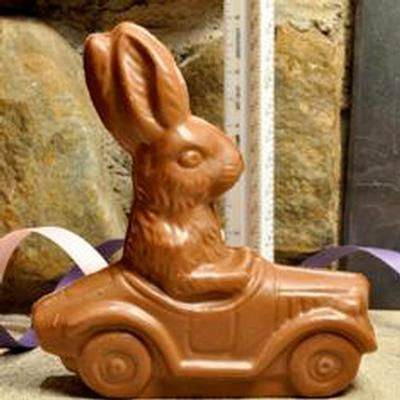 Bunny in a Car