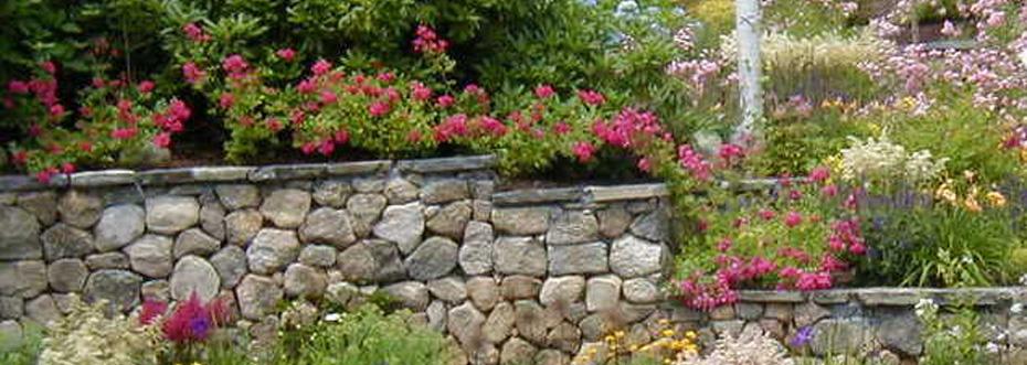 Garden Center And Nursery