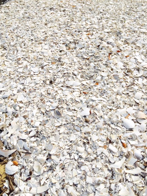 How Much Is A Ton Of Gravel >> Driveway Stone & Shells - T.W. Nickerson, Chatham, MA