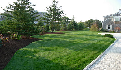 Chatham Lawn Care And Cape Cod Lawn Maintenance