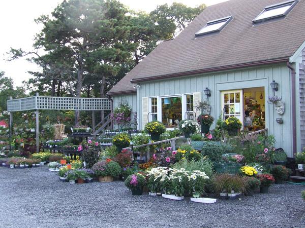 Garden Center Nursery